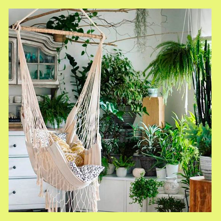 Jungle apartment: una forma original para decorar tu casa con plantas